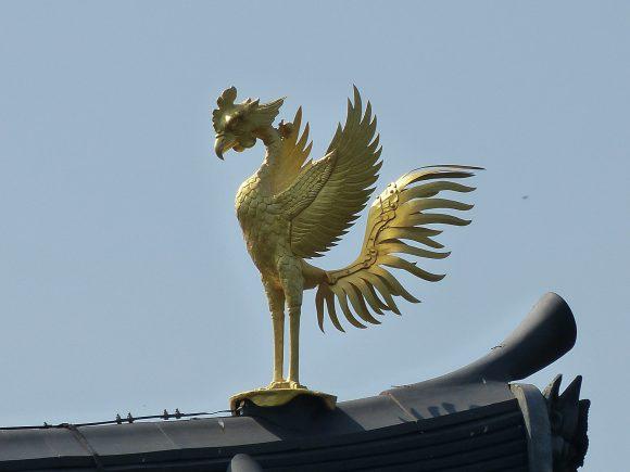 phoenix-993061_1920-1-580x435.jpg