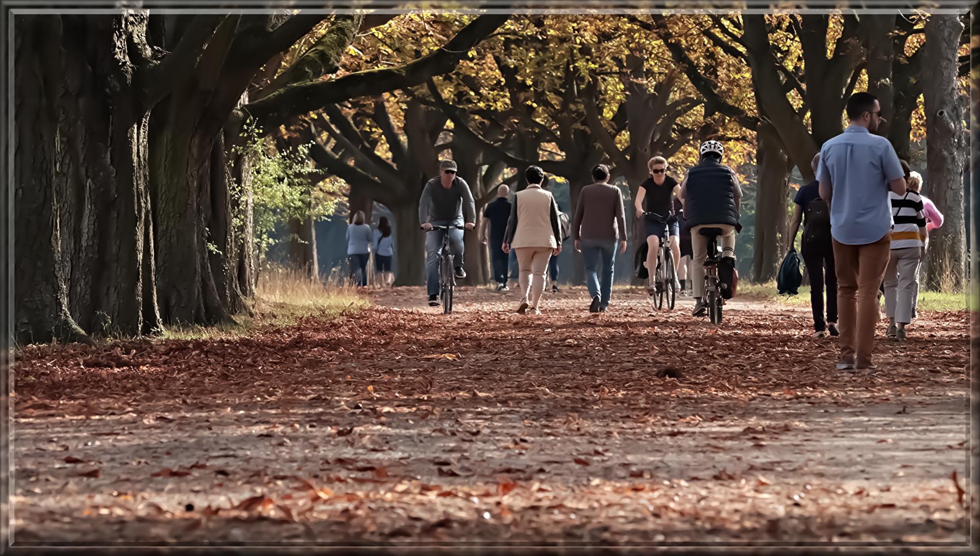 walk-3731094.jpg