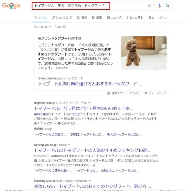 グーグルアドセンス合格サポート.com19.jpg