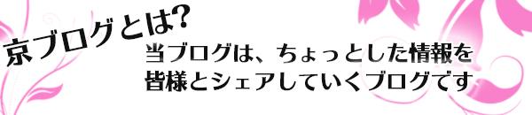 ブログ案内.png